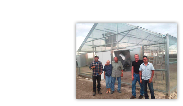 About Wisconsin Greenhouse Company